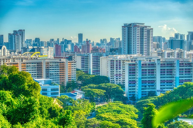 View from the Southern Ridges near Mount Faber in Singapore