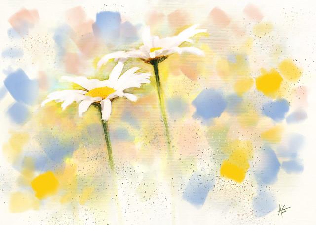 Daisies Thumbnail Sketch