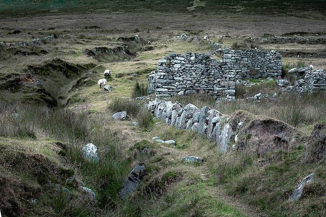 Deserted Village 2, Slievemore Mountain, Achill, Co. Mayo, Ireland