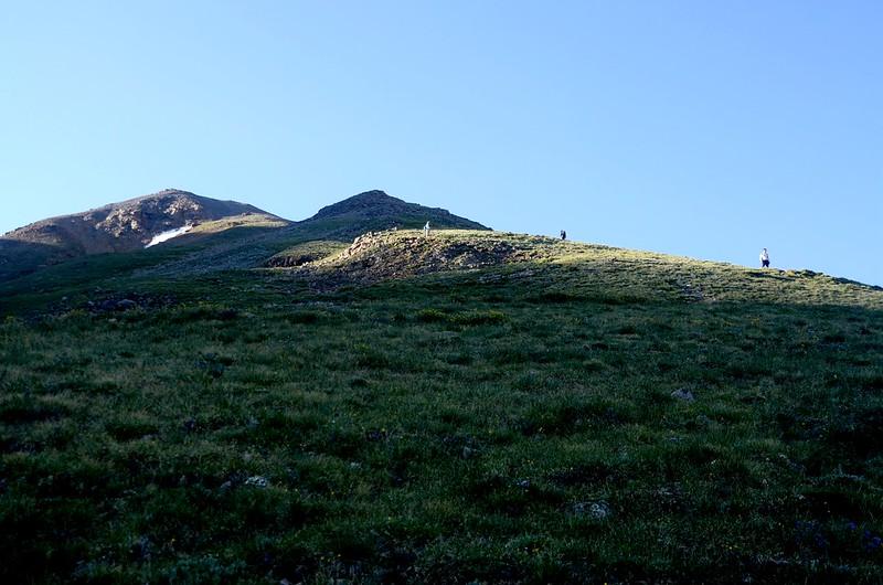 Mount Belford's northwest slope (1)