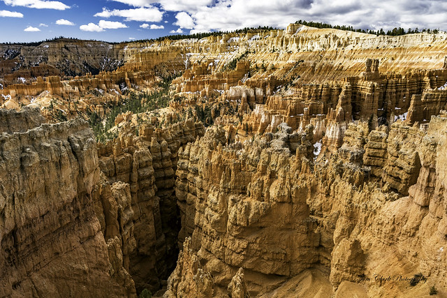 looking into Wall Street from Sunset Point in Bryce Canyon NP