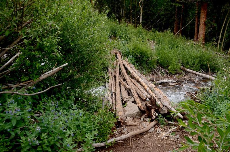 A shift log bridge crossing Missouri Gulch stream
