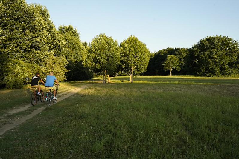 Parco Trepalle - Metanopoli