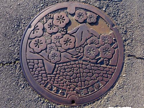 Misato Gunma, manhole cover (群馬県三郷村のマンホール)