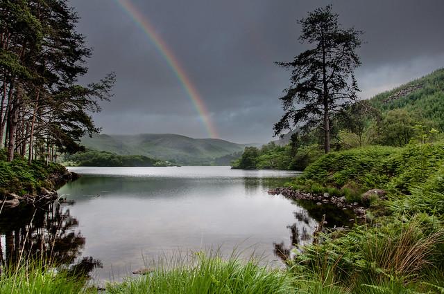 Glen Trool, Galloway Forest, Scotland