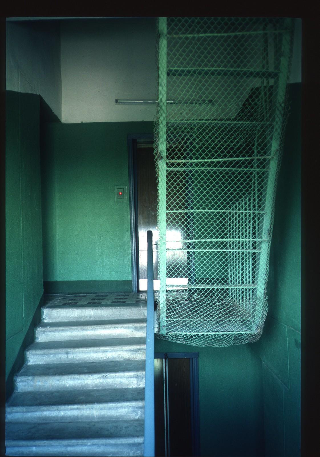 Матвеевское. «Круглый дом». Лестница на крышу