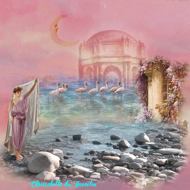 Les Flamands Roses - Version Christabelle
