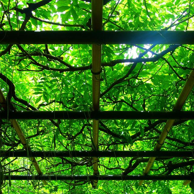 構成=Composition-227/Geometric and organic shapes made of wood