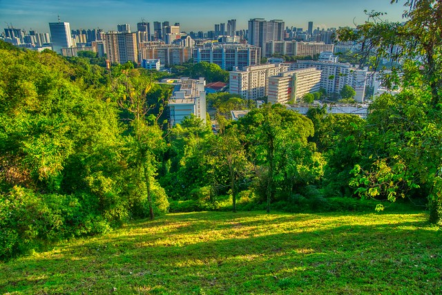 View from Mount Faber  on the Southern Ridges in Singapore