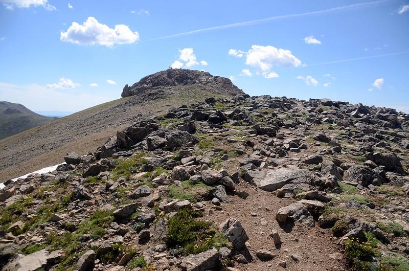 The summit knob of Mount Belford (1)