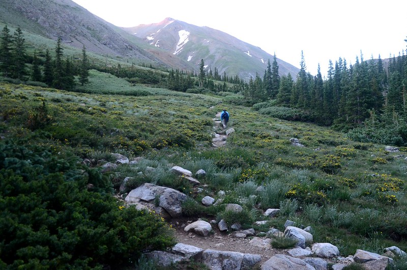 Just out of treeline,the terrain levels out and easy to hike (1)