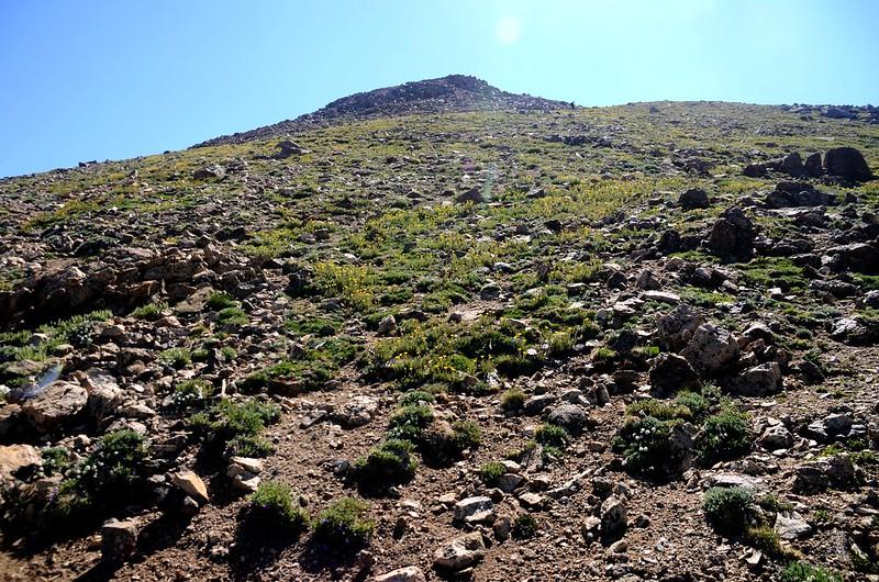 False summit of Mount Belford (1)