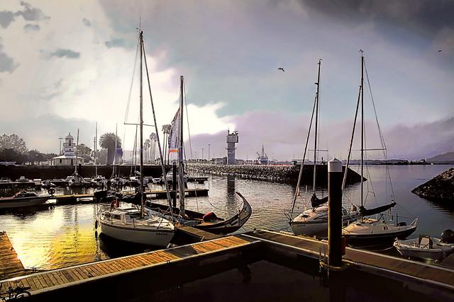 Oudinot garden dock - Aveiro (2)