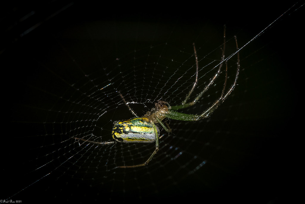 Spending time on the web