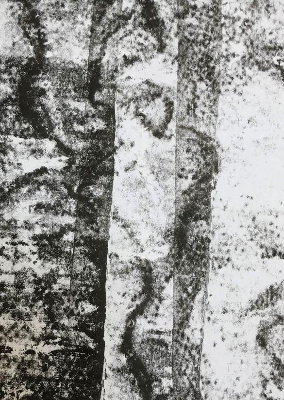 IMG_5773StellarMonoprint