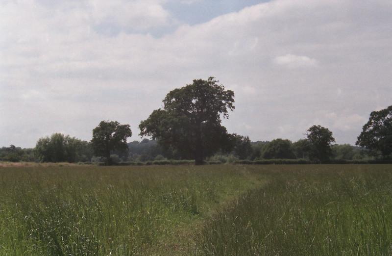 Centon 200 Landscape