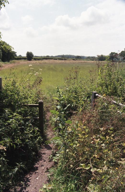 Centon 200 Gate Landscape