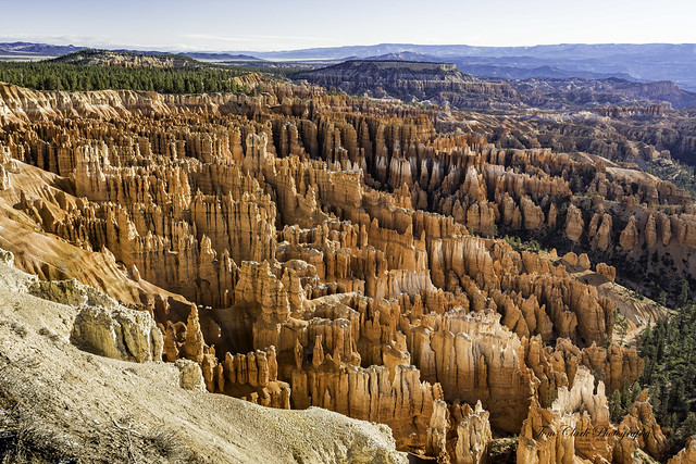Hoodoos galore at Inspiration Point in Bryce Canyon NP