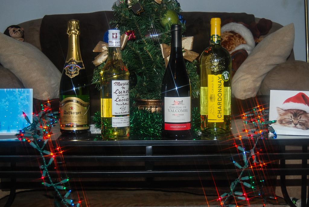 2010  30 dec vin et squirr-05