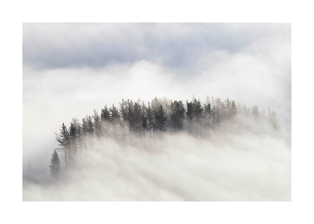 Nieblas desde Oiz
