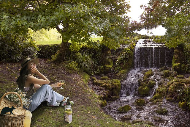 Picnic by the,,, you guessed it Waterfall.