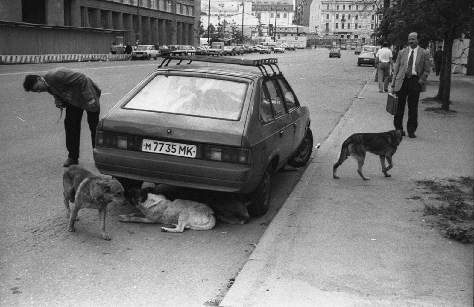 1993. Проспект Академика Сахарова