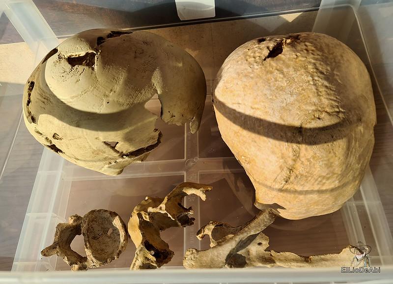Visita guiada al dolmen El Pendón y su Museo en Reinoso (18)