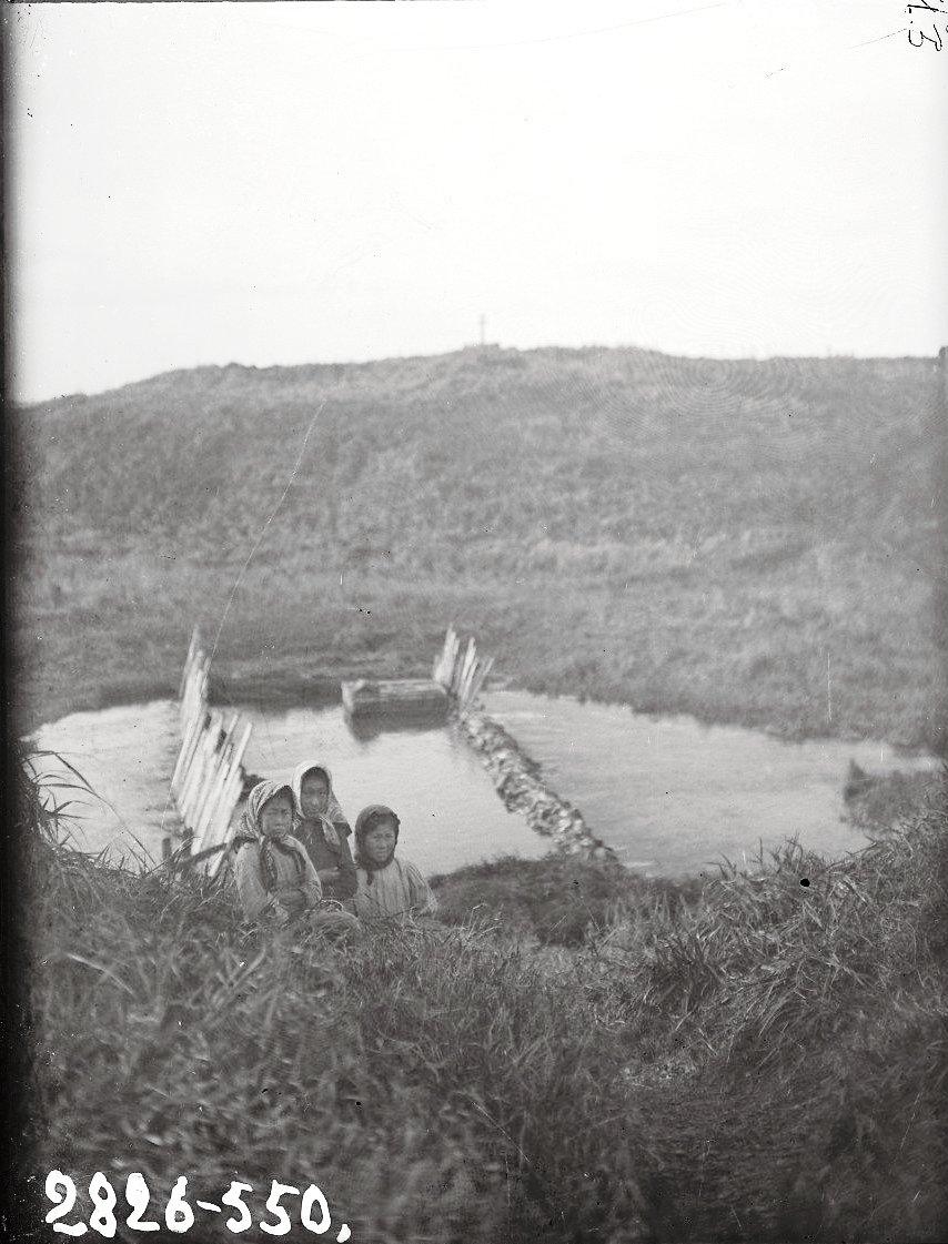 1909. Алеутские девочки. Алеутские острова, Умнак остров, с. Никольское. 26 октября