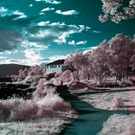 Infrared of the day 48