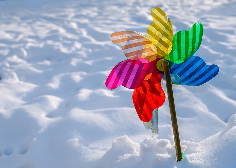 DSC_5265_CFH_snow_252.jpg