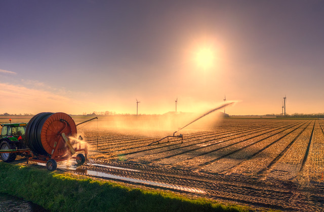 Spraying liquid sunshine over the fields. Burgerbrug, Holland.