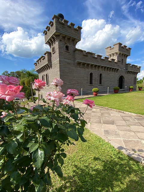 Castles and roses