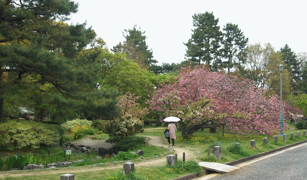 Kyoto Imperial Palace (京都御所, Kyōto Gosho)