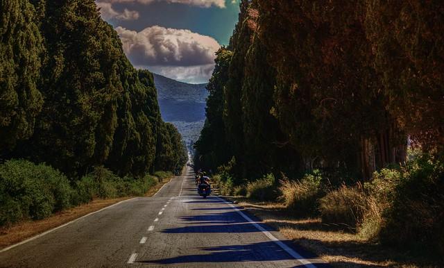 Easy Rider ( on Explore)