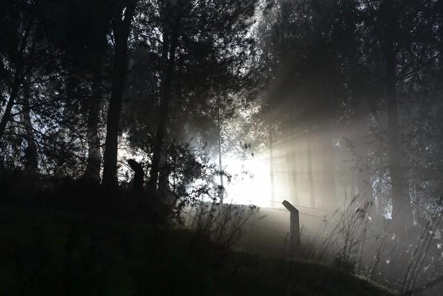 La Luz con el tiempo dentro