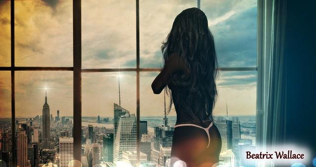 Second Life - Window