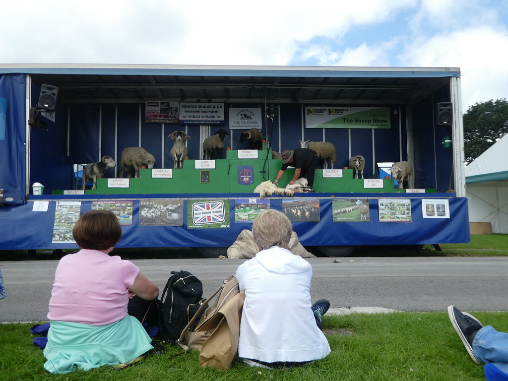 The Sheep Show, Great Yorkshire Show