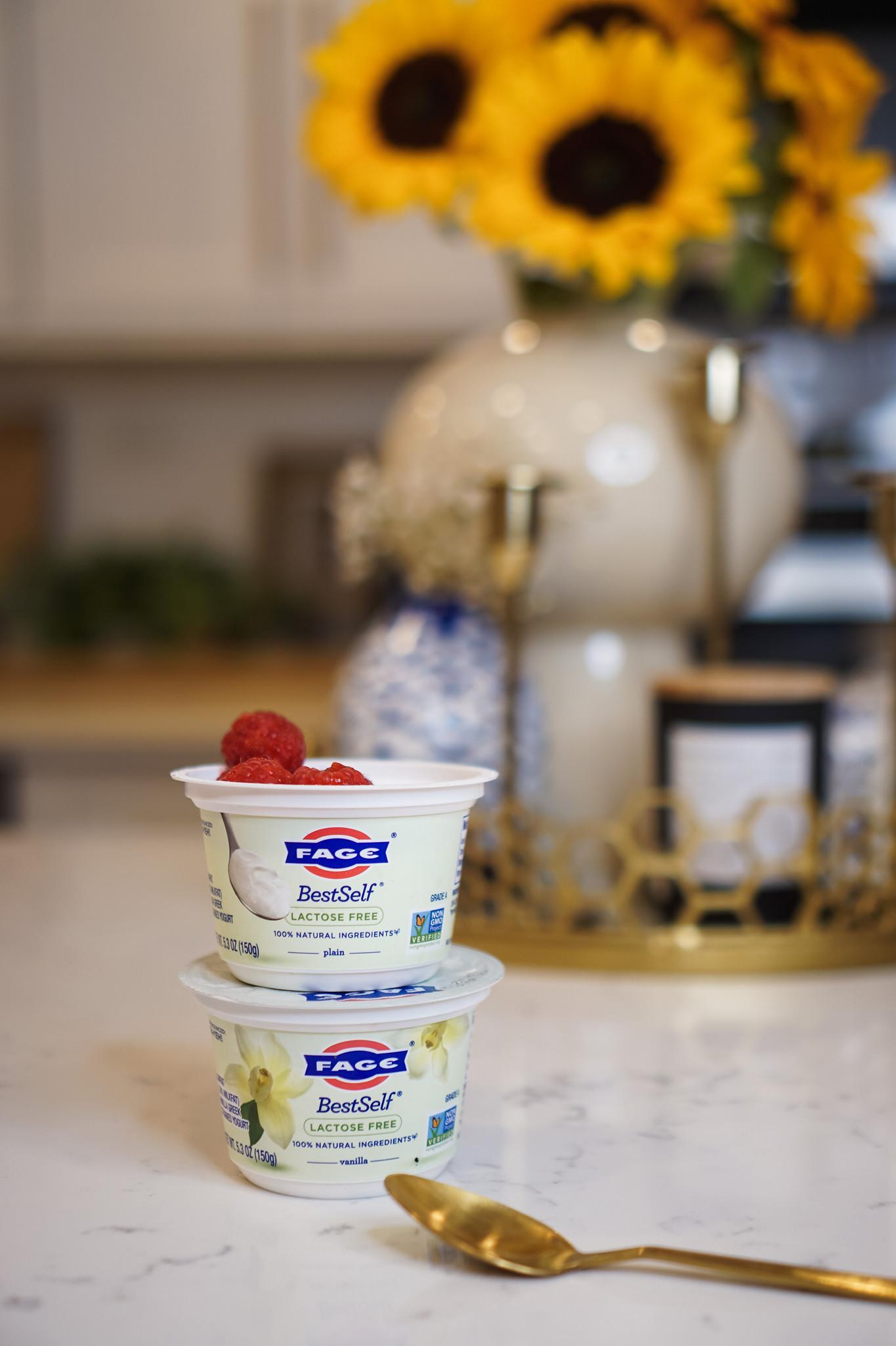 Lactose Free Yogurt | Lactose Free Greek Yogurt | Best Lactose Free Yogurt