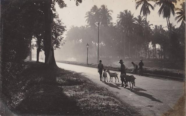 Early Morning at Java, 1930