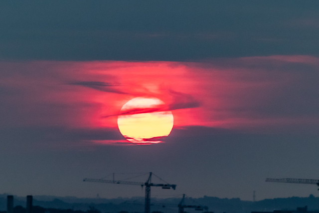 Rings around the Morning Sun