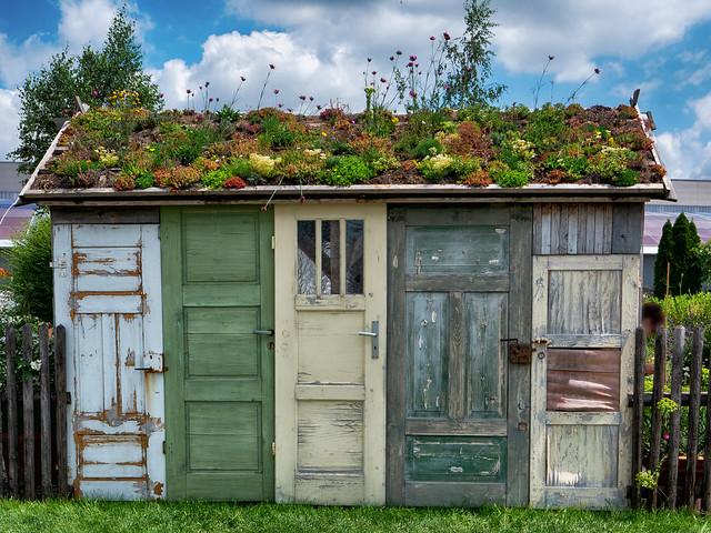 Roof greening / Dachbegrünung