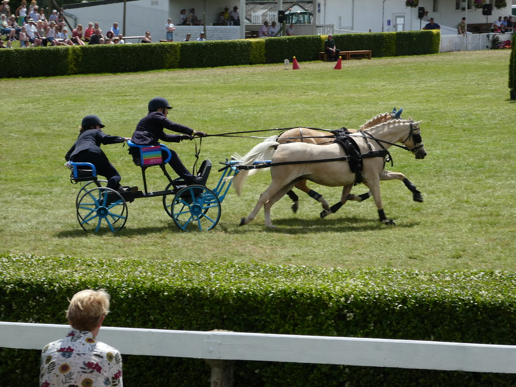 Scurry Driving competition at the Great Yorkshire Show