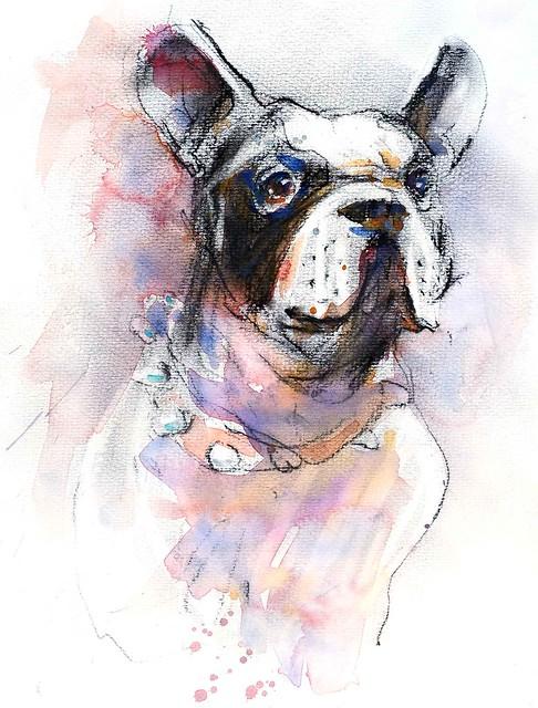 Portrait-de-bouledogue-français