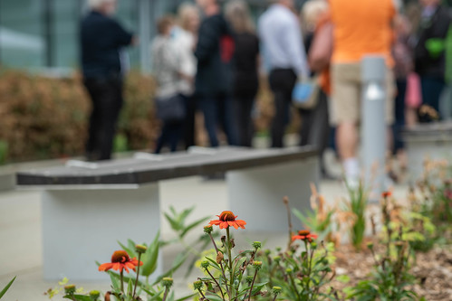 UFV CEP Shakespeare Reconciliation Garden unveiling — July 16 2021-52