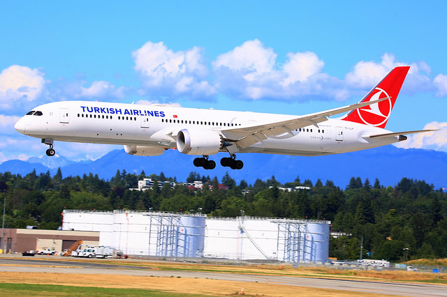 TurkishAirlines_TC-LLH_d