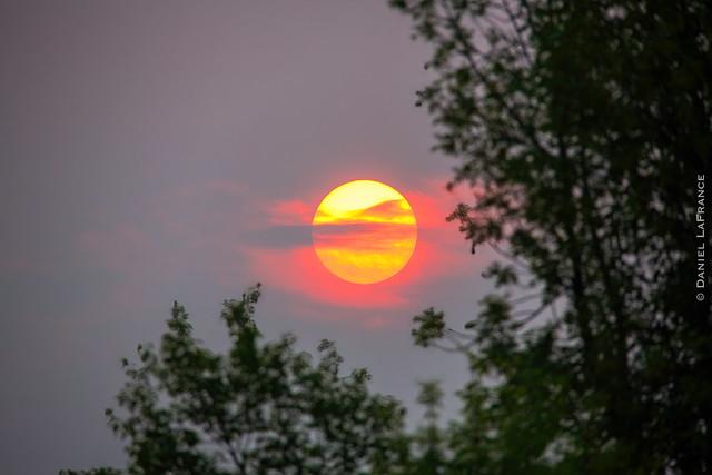 Red Sunrise (0863)-2