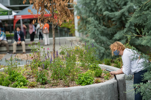 UFV CEP Shakespeare Reconciliation Garden unveiling — July 16 2021-51