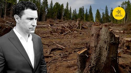 Tánczos Barna, nu sabota strategia europeană pe păduri