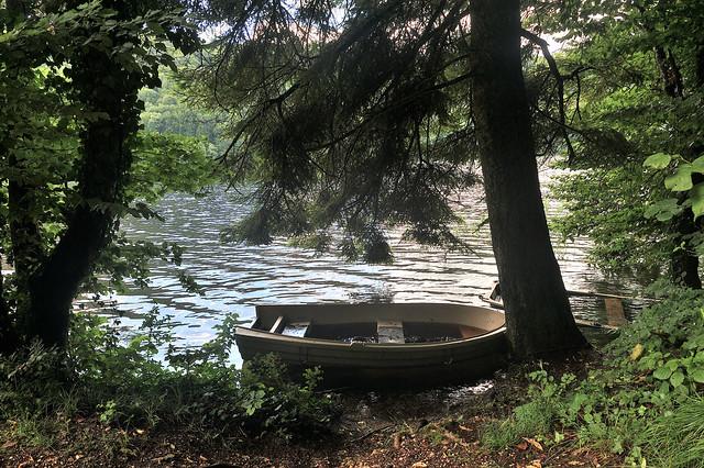 Lac de Val ( Le Hérisson ).