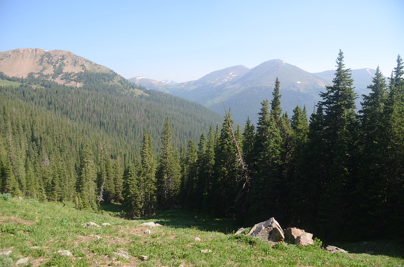 View to the north as the trail breaks out of the trees